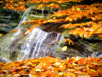 Cascading Leaves and Water