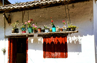 Rustic Flower Display - Mexican Residence